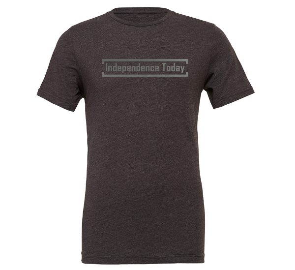 Independence Today - Dark-Gray_Silver Motivational T-Shirt | EntreVisionU